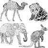 Tiere in der Ornamentik