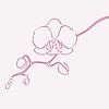 ID 3291908 | Kwiat orchidei | Klipart wektorowy | KLIPARTO