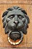 ID 3218714 | Türklopfer mit dem Kopf eines Löwen | Foto mit hoher Auflösung | CLIPARTO