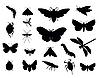 Set von Insekten