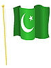 Vektor Cliparts: Flagge von Pakistan
