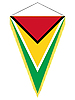Wimpel mit der Nationalflagge von Guyana