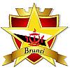 goldener Stern auf der Flagge von Brunei