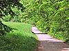 ID 3156222 | Weg im Park | Foto mit hoher Auflösung | CLIPARTO