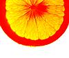多汁的橙子 | 免版税照片