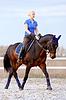 棕色马的女骑士 | 免版税照片