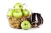 골드 바구니에 사과와 기니피그 | Stock Foto
