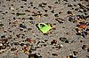 Eine kaputte Tasse Kaffee am Strand | Stock Foto