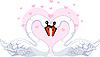Schwäne in der Liebe