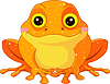 Funny Złoty Toad   Stock Vector Graphics
