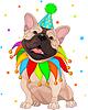 Französisch Bulldog am Geburtstag