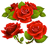 Red roses | Stock Vector Graphics