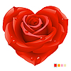 Rote Rose in der Form von Herzen