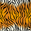 Бесшовная текстура в виде тигровой шкуры | Векторный клипарт
