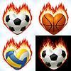 Fußball, Basketball und Volleyball - Bälle