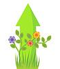 植物插图的箭头增长 | 向量插图