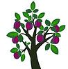 装饰李子树的成熟果实 | 向量插图