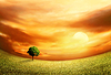 Piękny Krajobraz Zachód | Stock Foto