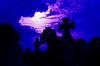 ID 3233146 | 켈트 무덤 크로스 | 높은 해상도 사진 | CLIPARTO