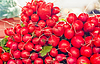 Farm Fresh Radishes on market | Stock Foto