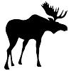 驼鹿 | 向量插图