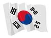 挥舞着韩国国旗 | 向量插图