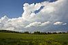 Sommer-Landschaft | Stock Foto