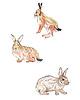 Zające i króliki | Stock Illustration