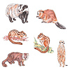 Diverse Tiere | Stock Illustration