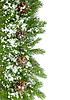 Christmas ramy z szyszek i śniegu | Stock Foto
