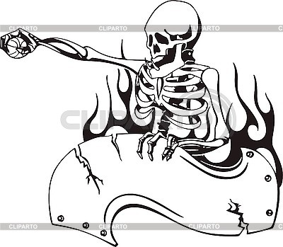 Schädel Skelett | Stock Vektorgrafik |ID 3001230