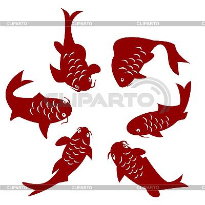 Koi ryb | Klipart wektorowy |ID 3018409