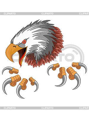 Adler | Illustration mit hoher Auflösung |ID 3011108