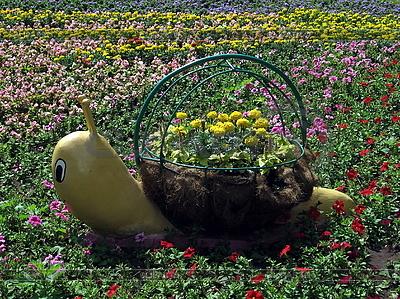 Schnecke-Blumenbeet mit Blumen | Foto mit hoher Auflösung |ID 3012007