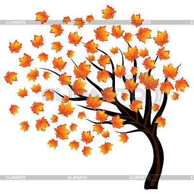 Одинокое дерево с падающими листьями