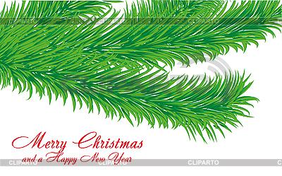 Weihnachtsgrüße Karte mit Tanne-Zweig | Stock Vektorgrafik |ID 3011440