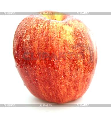 Apfel | Foto mit hoher Auflösung |ID 3015868