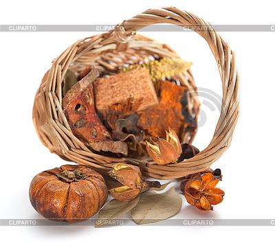 Herbst-Objekte. Thanksgiving-Tages-Karte mit Kürbis | Foto mit hoher Auflösung |ID 3166906