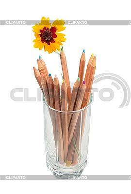 여러 가지 빛깔 된의 나무 연필 및 유리에서 노란색 꽃 | 높은 해상도 사진 |ID 3032740