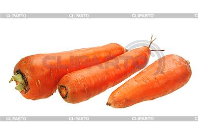 Drei orangefarbene Karotten | Foto mit hoher Auflösung |ID 3032805