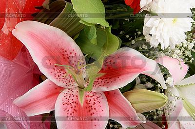 핑크 백합 꽃다발 | 높은 해상도 사진 |ID 3032828