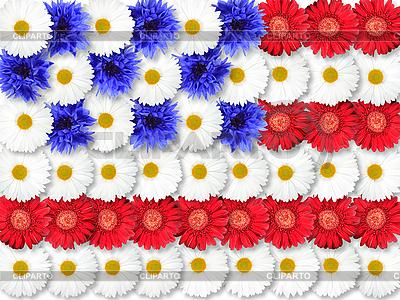 Tło z kwiatów jako flaga USA | Foto stockowe wysokiej rozdzielczości |ID 3032946