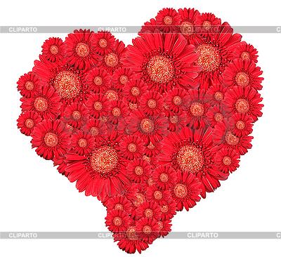 Strauß von roten Blumen wie Herz | Foto mit hoher Auflösung |ID 3032956