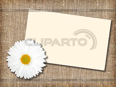 Weiße Blume und leere Visitenkarte | Foto mit hoher Auflösung |ID 3033036