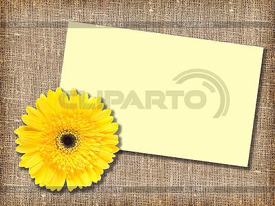 Gelbe Blume und leere Visitenkarte | Foto mit hoher Auflösung |ID 3033037