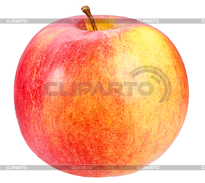 Types Of Yellow Apple's http://cliparto.com/image/3033047-red-yellow-apple/