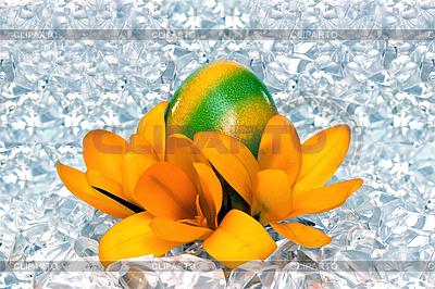 Пасхальное яйцо с цветами на льду | Фото большого размера |ID 3014560