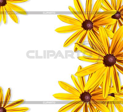 Rahmen der gelben Blumen | Foto mit hoher Auflösung |ID 3019312