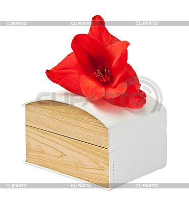 Geschenkbox mit Gladiolenblume | Foto mit hoher Auflösung |ID 3019336