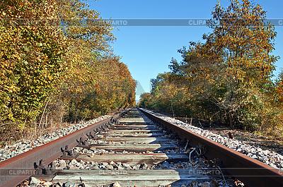 Eisenbahn im herbstlichen Wald | Foto mit hoher Auflösung |ID 3074435